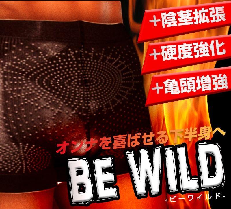 BE-Wild_09